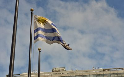 Tres nuevas empresas se suman a las cadenas de producción y distribución de cannabis en Uruguay