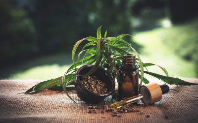 Kuida, de Colombia, empieza las ventas de cannabis en el mercado de Estados Unidos